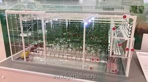 Липецкие аграрии представили инвестиционные проекты на выставке в Москве