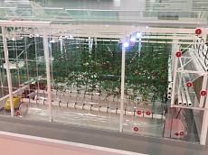 Липецкая область принимает участие в агропромышленной выставке «Золотая осень»