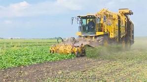 Опыт развития сельхозкооперации Липецкой области будут применять в других регионах