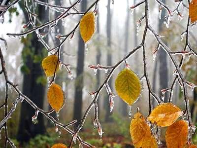 Погода в Астрахани на конец недели