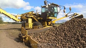 Олег Королев: «Липецкие аграрии – в числе лучших в России по развитию свеклосахарного производства»