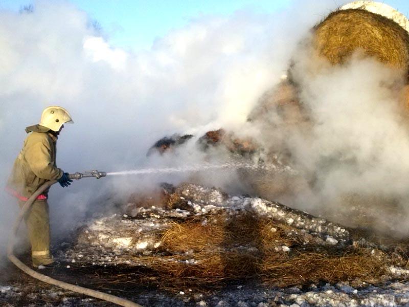 В Астраханской области детишки спалили 2,5 тонны сена
