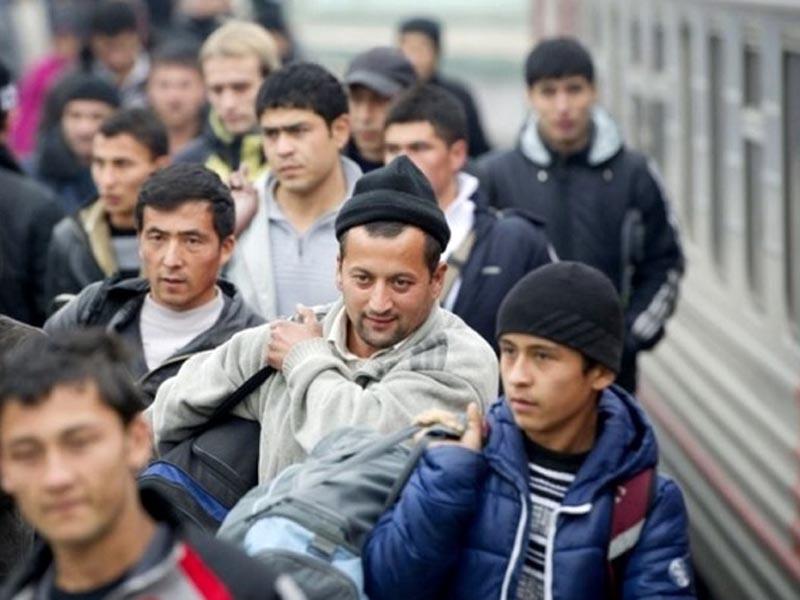 Группа почти из ста человек пыталась незаконно пересечь границу в Астраханской области