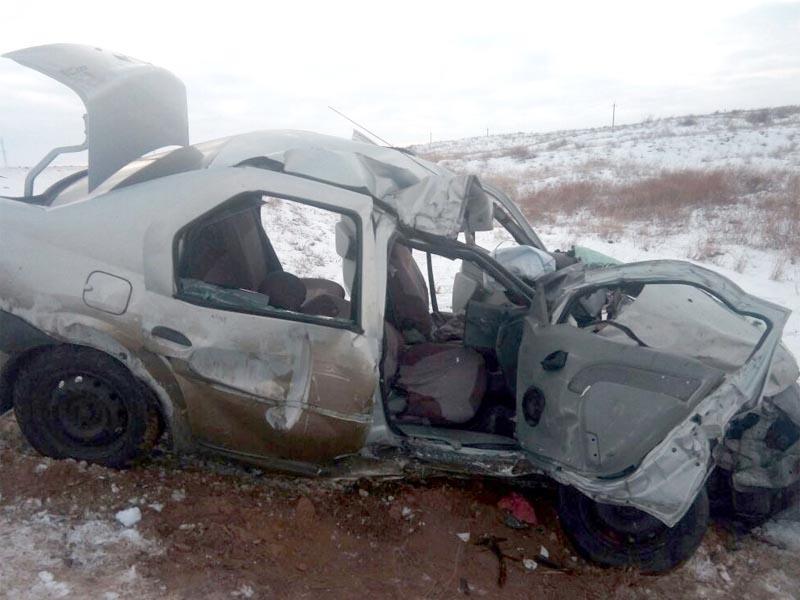 В Астраханской области на трассе по вине лошадей погиб мужчина
