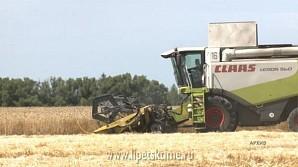 Сельское хозяйство в регионе развивается семимильными шагами