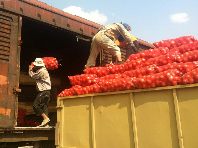 Завершилась сезонная погрузка соли и овощебахчевой продукции в Астраханском регионе Приволжской железной дороги